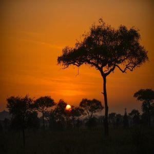 Asanja Africa Sundowner