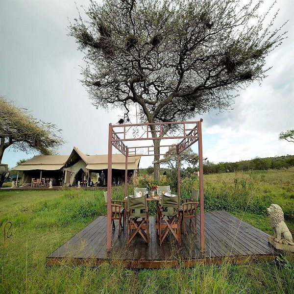 luxury safari camps in Tanzania